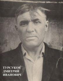 Турсуков Дмитрий Иванович