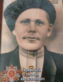 Кривошей Трофим Харитонович