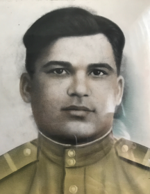 Никитин Дмитрий Павлович
