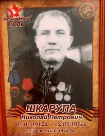 Шкарупа Николай Петрович