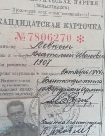 Левкин Анатолий Иванович