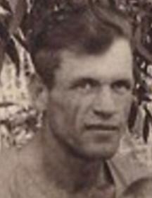 Годовиков-Ланцев Николай Михайлович