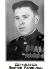 Деримедведь Дмитрий Васильевич