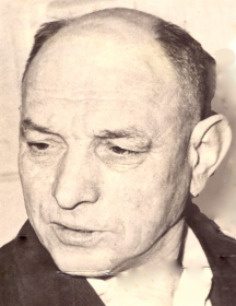 Туманов Георгий Анисимович