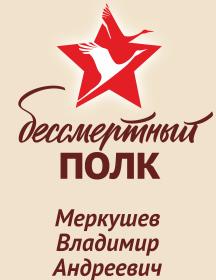 Меркушев Владимир Андреевич