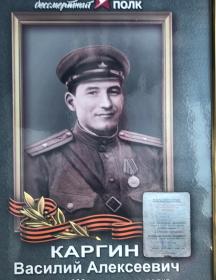 Каргин Василий Алексеевич