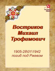 Востриков Михаил Трофимович
