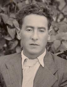 Иоффе Михаил Львович
