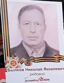 Былков Николай Яковлевич