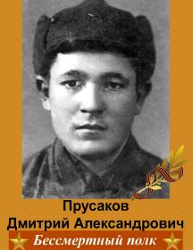 Прусаков Дмитрий Александрович