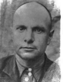 Видякин Степан Гурьянович
