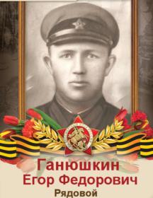 Ганюшкин Егор Федорович