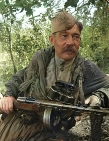 Симонов Николай Алексеевич