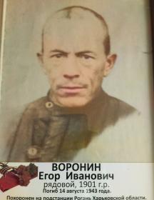 Воронин Егор Иванович