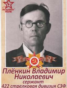 Плёнкин Владимир Николаевич