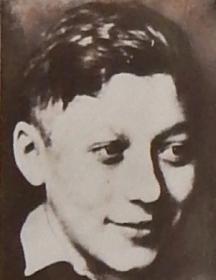 Негинский Юлий Александрович