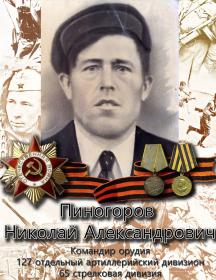 Пиногоров Николай Александрович