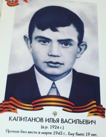 Капитанов Илья Васильевич