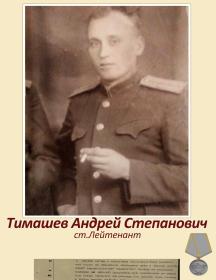 Тимашёв Андрей Степанович