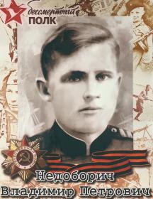 Недоборич Владимир Петрович
