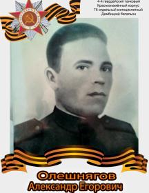 Олешнягов Александр Егорович