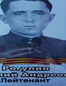 Рогулин Василий Андреевич