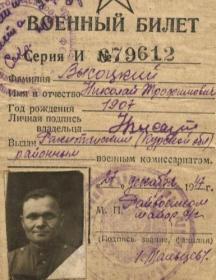 Высоцкий Николай Трофимович