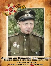 Анисимов Николай Васильевич