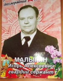 Малыгин Игорь Алексеевич