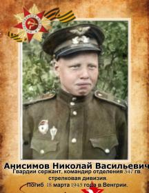 Анисимов Николай Викторович