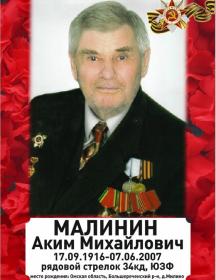 Малинин Аким Михайлович