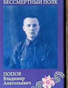 Попов Владимир Анатольевич