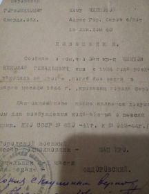 Чинцов Николай Гинадьевич