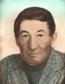 Никулин Василий Ефимович
