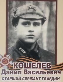 Кошелев Данил Васильевич