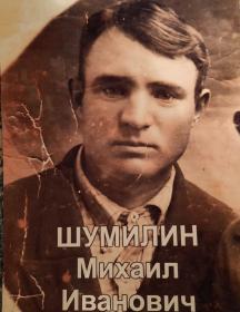 Шумилин Михаил Иванович