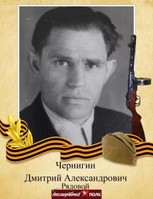 Чернигин Дмитрий Александрович