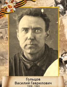 Гольцов Василий Гаврилович