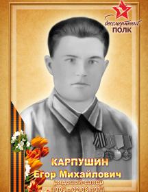 Карпушин Егор Михайлович