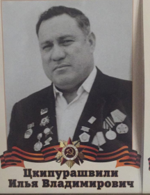 Цкипурашвили Илья Владимирович