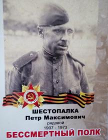 Шестопалка Петр Максим Ович