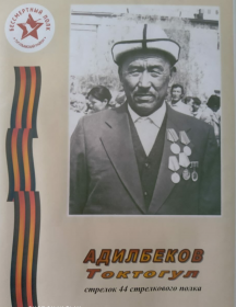 Адилбеков Токтогул Адилбекович