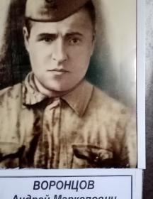 Воронцов Андрей Маркелович