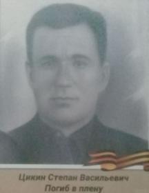Цикин Степан Васильевич