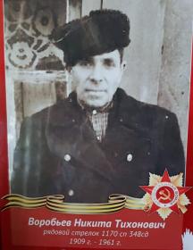Воробьев Никита Тихонович