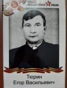 Тюрин Егор Васильевич