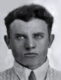 Литвинов Владимир Данилович