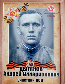 Цыганов Андрей Илларионович