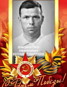 Довгопол Пётр Афанасьевич