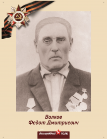 Волков Федот Дмитриевич